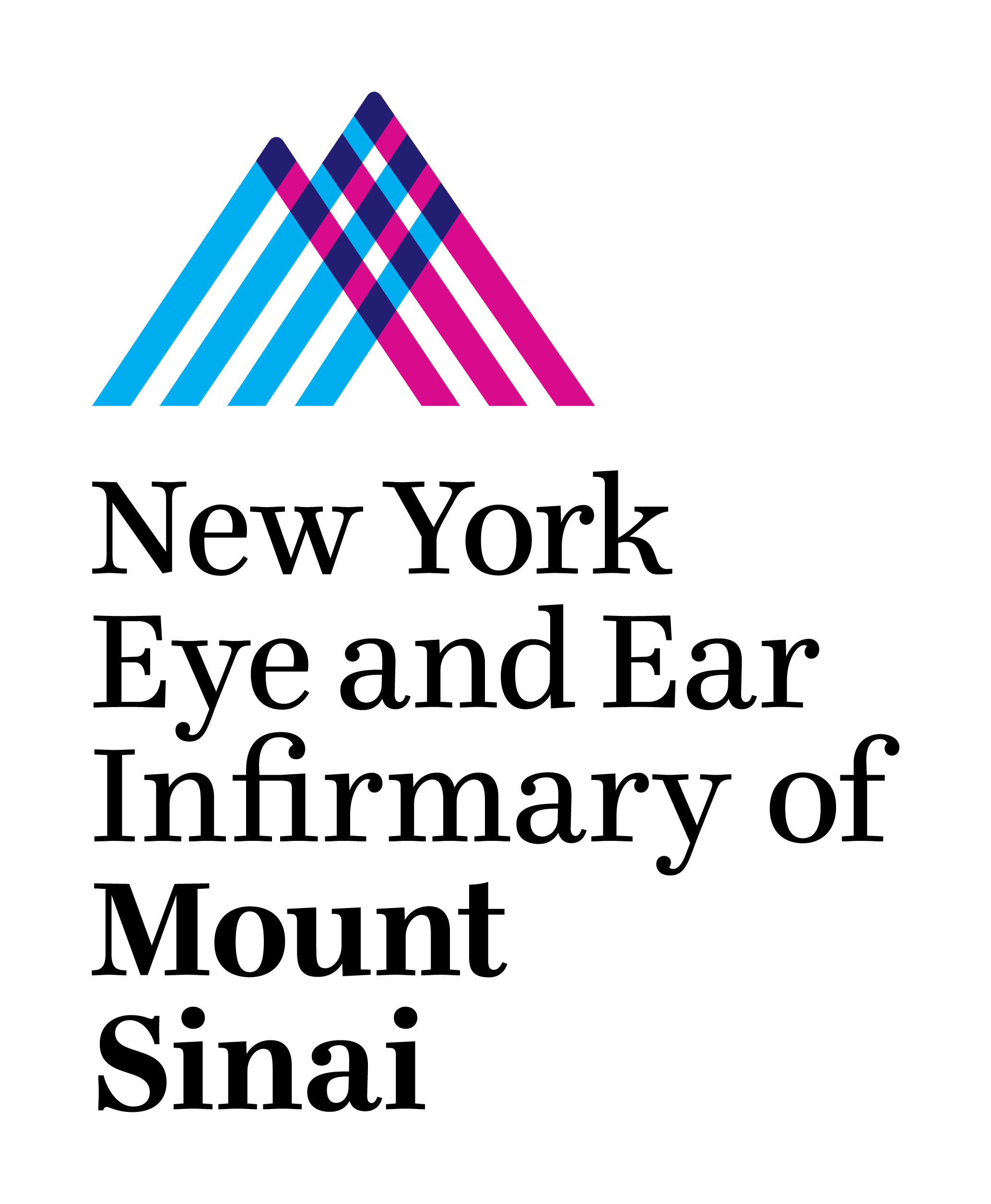 3rd Annual Endoscopic Middle Ear Surgery Dissection Course at New York Eye and Ear Infirmary of Mount Sinai